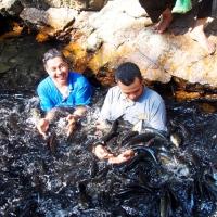 Cerita Dari Terengganu #2: The Big Fish!