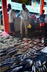 Hasil ikan yang melimpah, tentu saja menggiurkan bagi nelayan negeri-negeri tetangga.